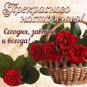 Розы в корзинке для прекрасного настроения