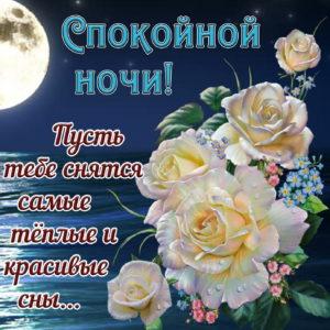 Картинка спокойной ночи с красивыми розами под луной