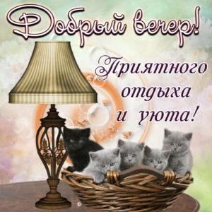 Открытка с милыми котятами и пожеланием доброго вечера