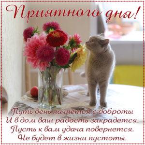 Картинка приятного дня с котиком и цветочками