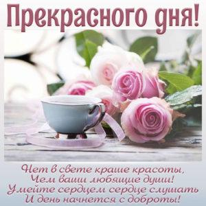 Пожелание прекрасного дня и милые розы на картинке