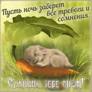 Картинка с кроликом и пожеланием сладких снов