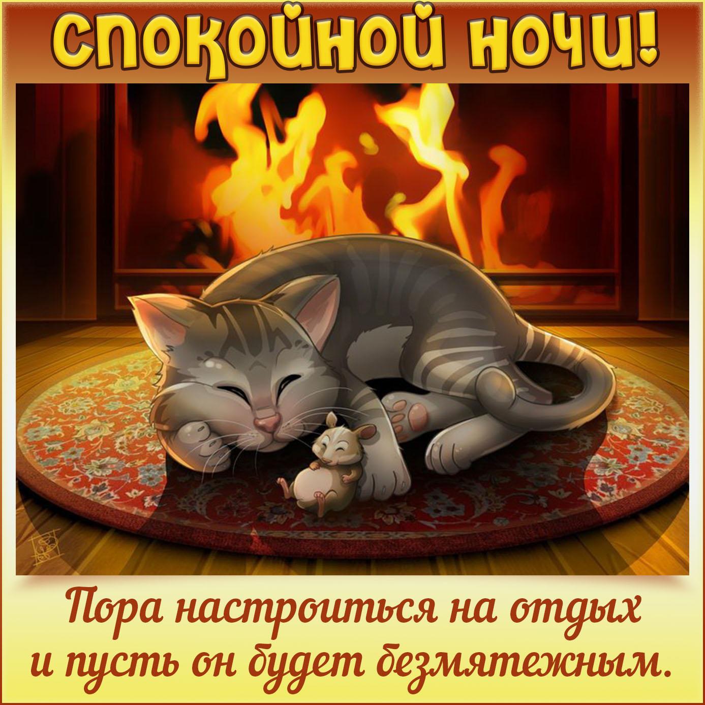 Картинка спокойной ночи с котиком у камина