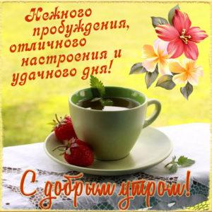 Пожелание доброго утра на милой открытке