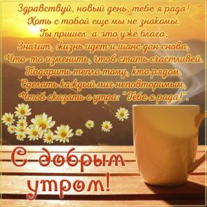 Картинка с ромашками и пожеланием доброго утра