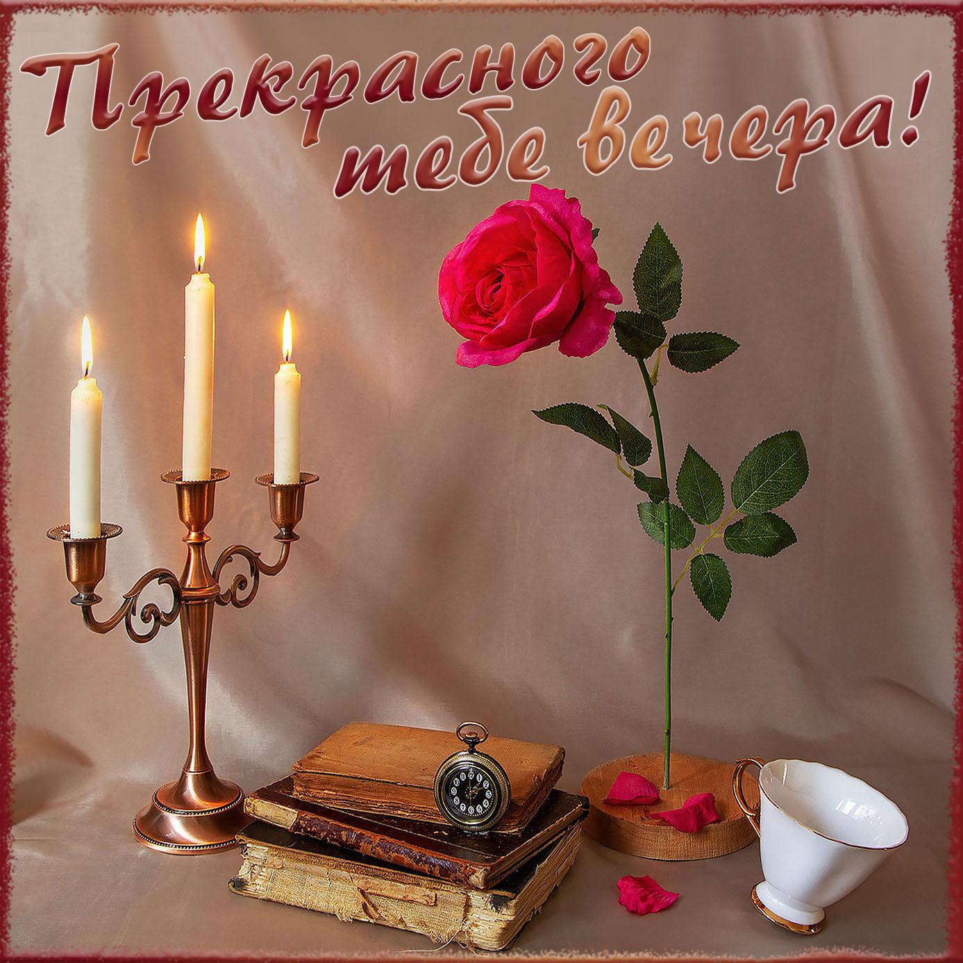 Картинка прекрасного вечера с розой и свечами