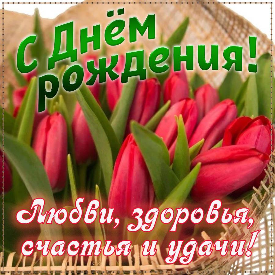Картинка на День рождения с яркими тюльпанами