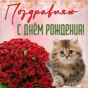 Милый котенок и букет роз на День рождения