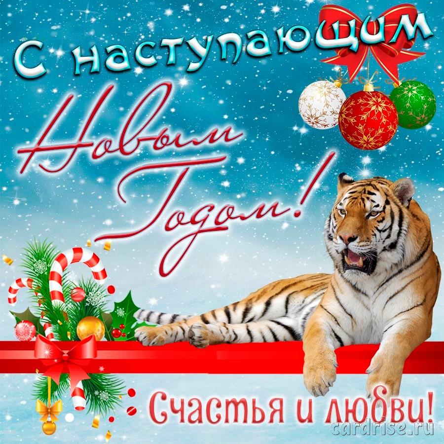 Открытка на Новый год с красивым тигром