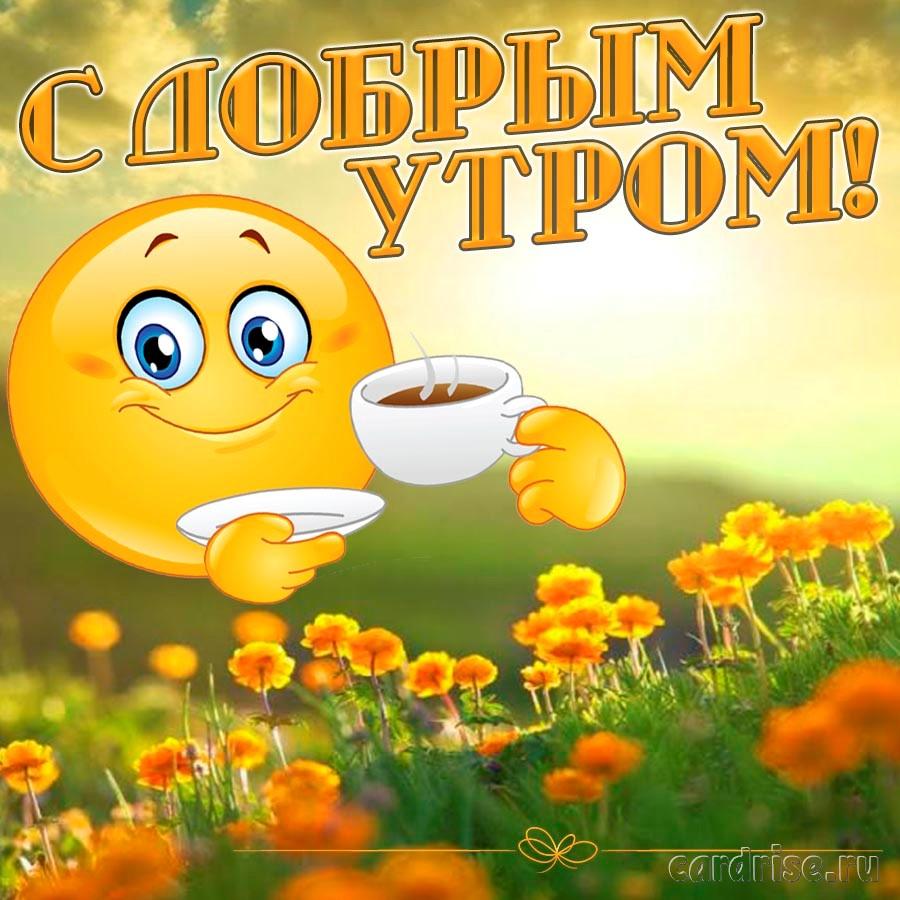 Милое солнышко желает Вам доброго утра