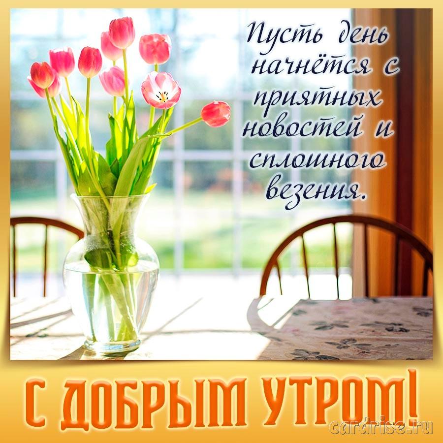 Картинка с тюльпанами и пожеланием доброго утра