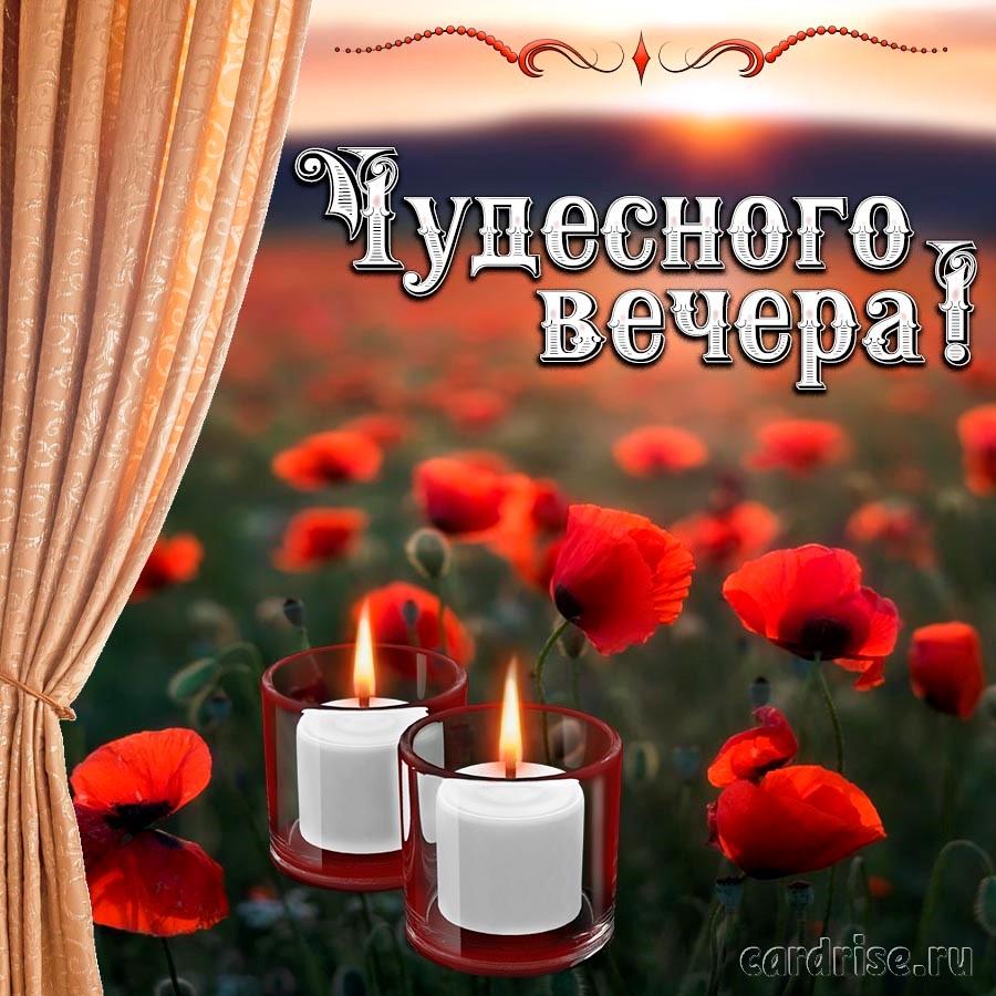Пожелание чудесного вечера на фоне красных маков